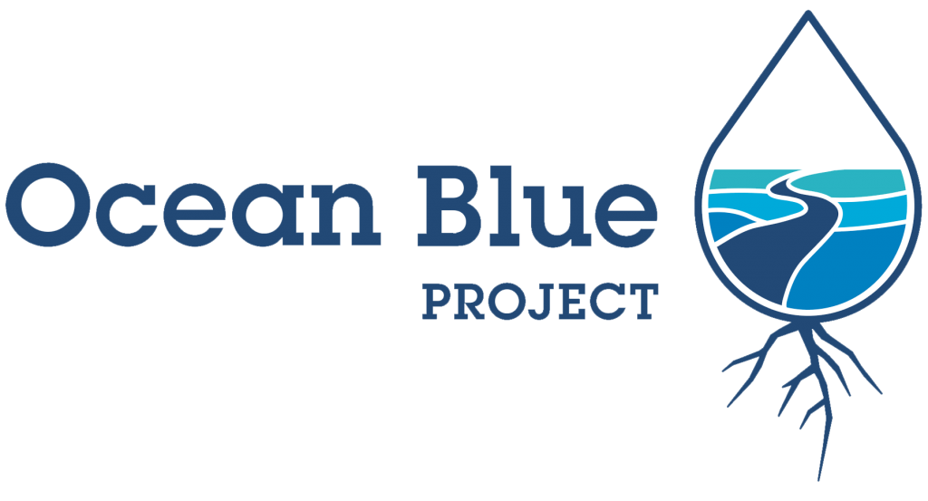 ocean blue project beach cleanup